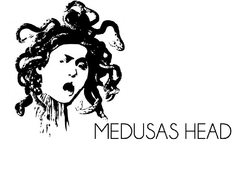 Medusas Head