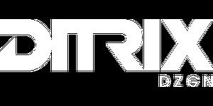 DiTrix DZGN | Novo site em breve