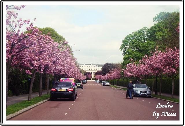 leyton-londra-cartier-estul-londrei-ciresi