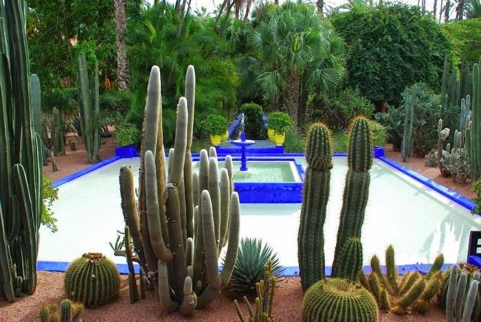 Fuente azul con cactus