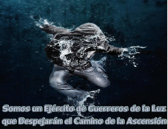 Despejen el Camino a la Ascensión, limpiando la semilla oscura con la Oración de Ho'oponopono.