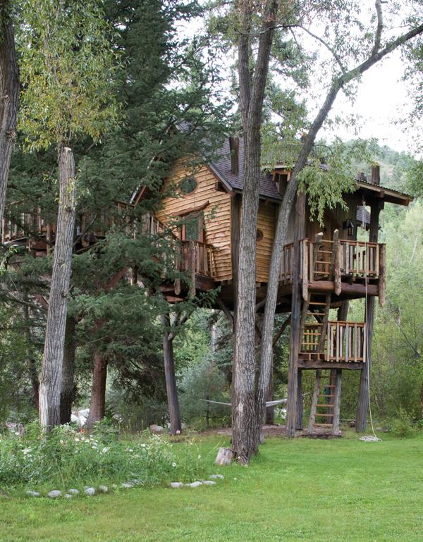 vista de la cabaña en el árbol de dia