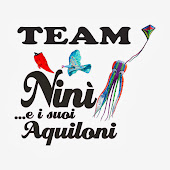 Team Ninì e i suoi aquiloni