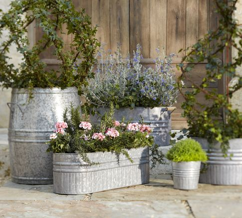 Galvanized metal tubs buckets pails as planters for Large metal tub for gardening