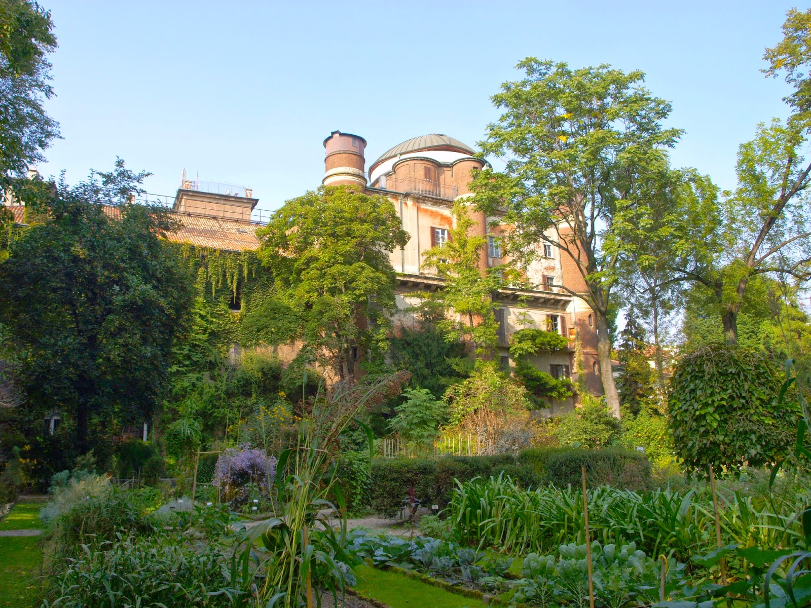 Unfashionable orto botanico di brera milano for Giardino botanico milano