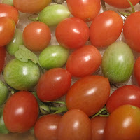 Grape Tomatoes from our garden