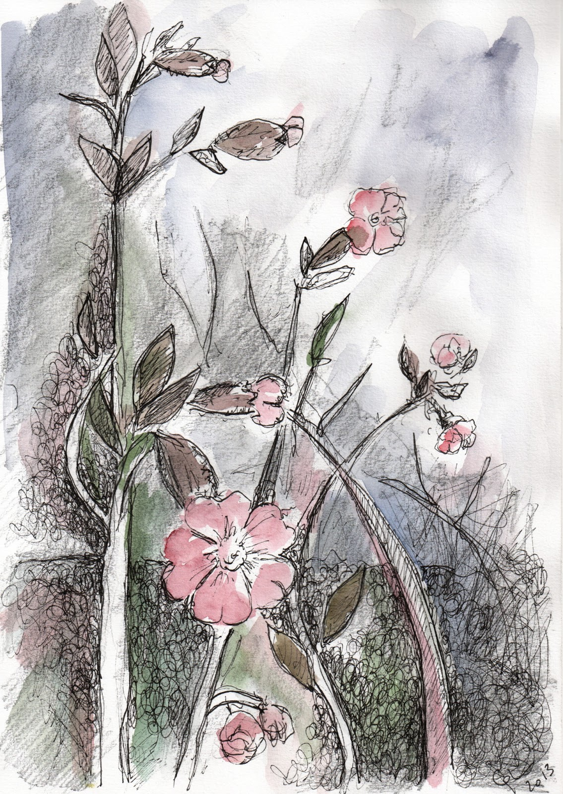 tine botanique 20 dessins de fleurs et plantes. Black Bedroom Furniture Sets. Home Design Ideas
