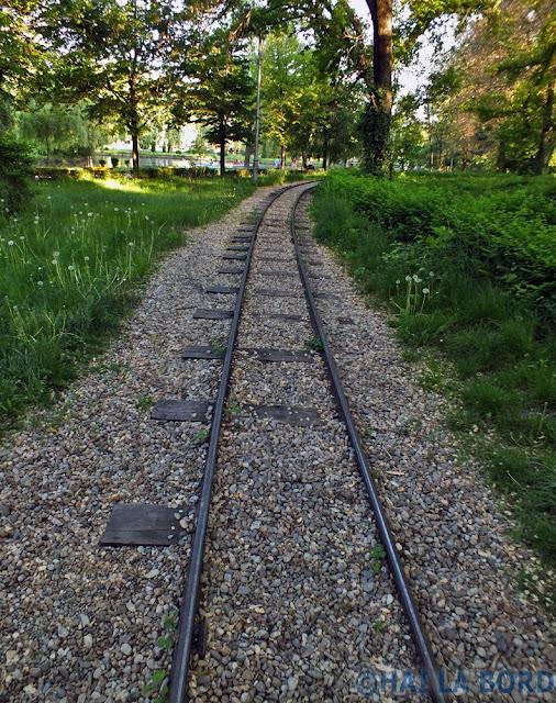 cale ferata trenulet pitesti