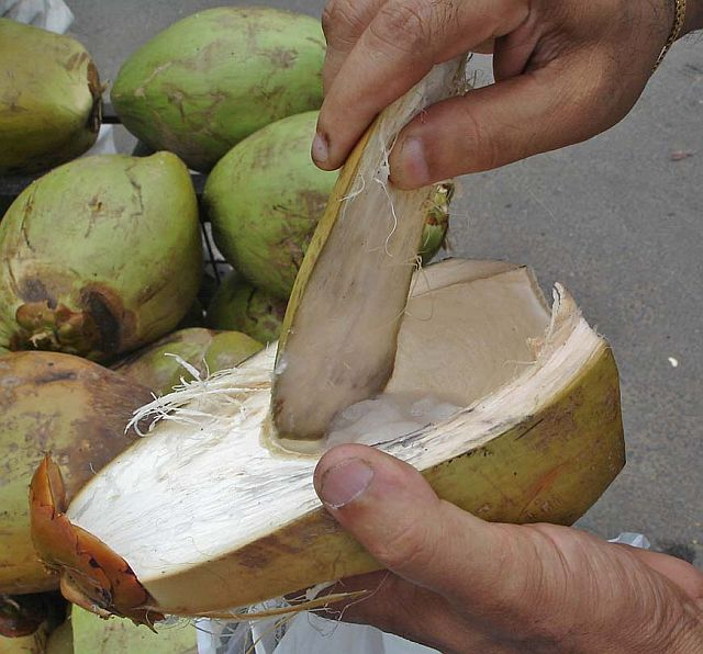 how to put a hole in a drinking coconut