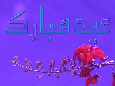 Beautiful Eid Mubarak Cards For Facebook