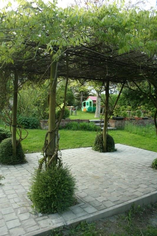 De biodiverse tuin februari 2014 - Pergola klimplant ...