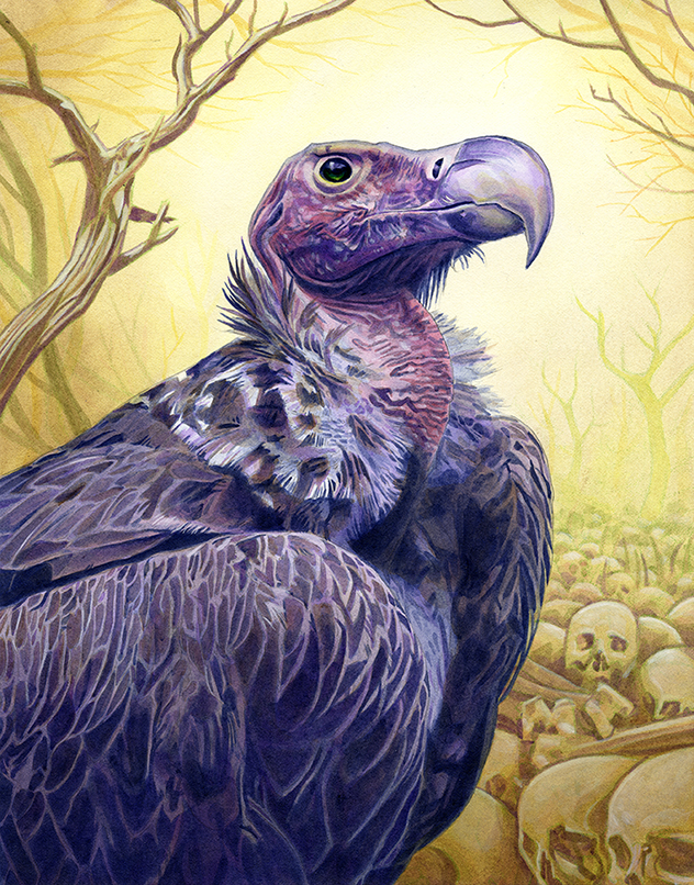 alan hawley illustration vulture painting