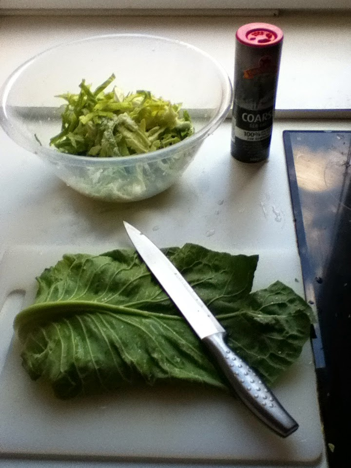 Shredding Cabbage for sauerkraut