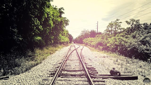 Summer Rail Road HD Wallpaper
