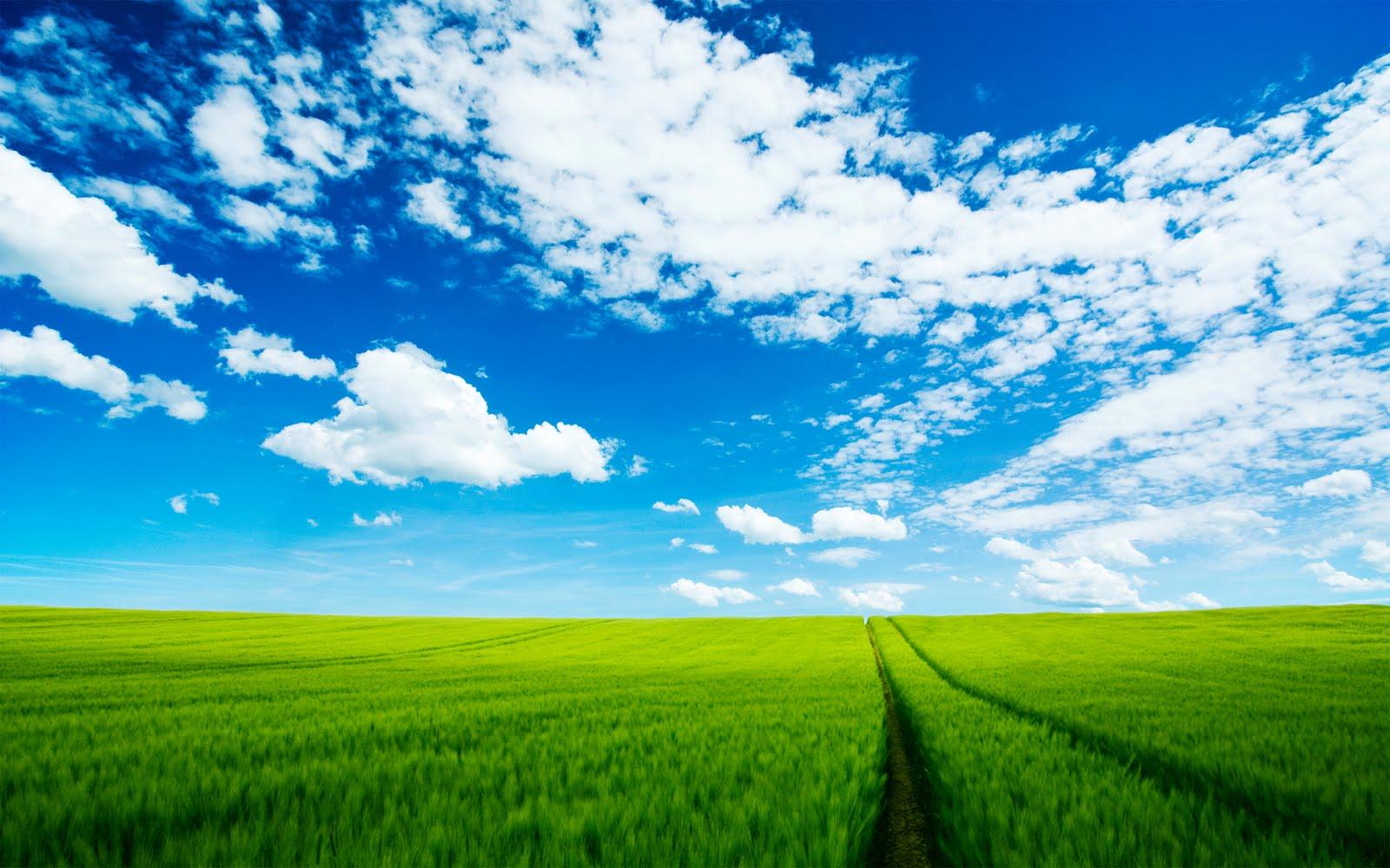 http://2.bp.blogspot.com/-BwQzsS7ekE4/TdIHeNkcLHI/AAAAAAAAAFM/3rn7r_DLy5o/s1600/Beautiful+HD+Nature+Green+And+Blue+Sky+Wallpaper+-+FreeHDWall.Blogspot.Com.jpg