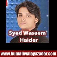 http://ishqehaider.blogspot.com/2013/11/syed-waseem-haider-nohay-2014.html