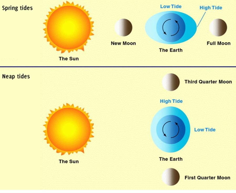 ... : El Niños And Extreme Proxigean Spring Tides - 898x734 - jpeg