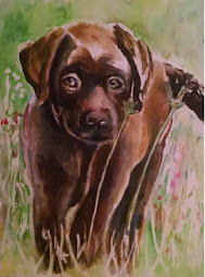 Custom Pet Portraits to Order