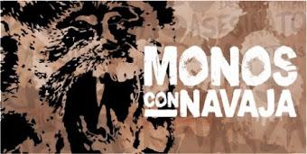 Monos con Navaja en México...