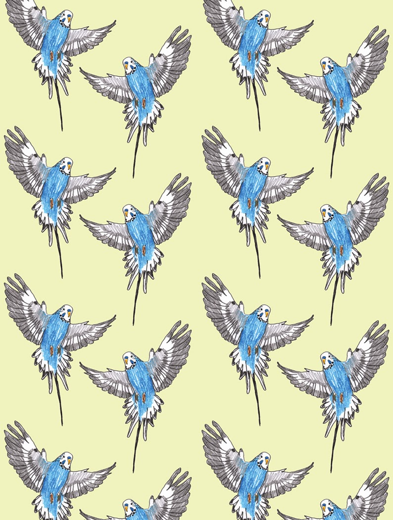 Budgie Love wallpaper  by Åsa Wikman available at The Wallery