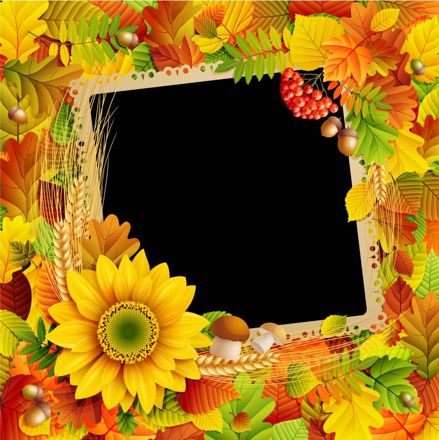 美しい落ち葉で囲んだフレーム beautiful autumn leaves frame イラスト素材