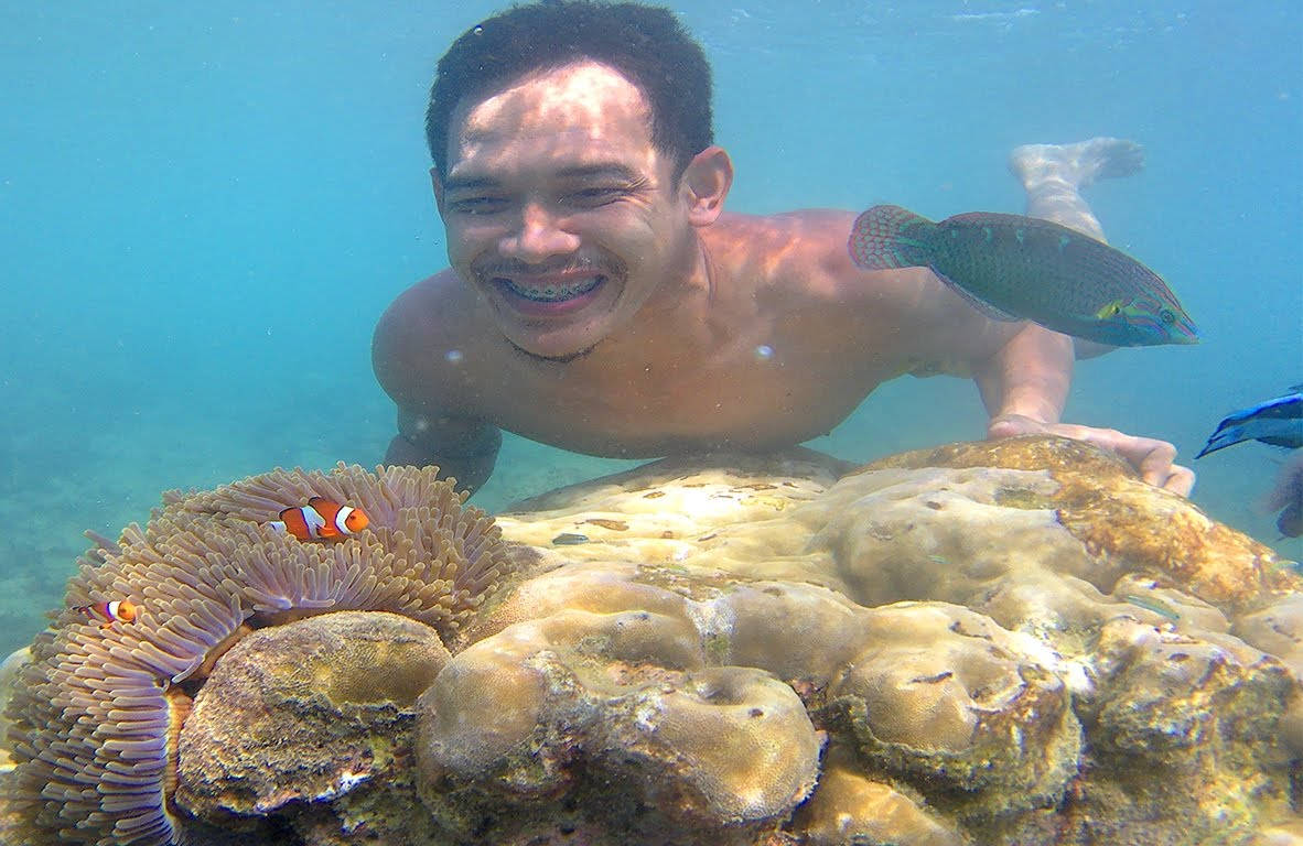 ViDEO KUMPULAN FOTO UNDER WATER