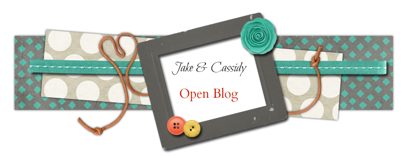 Jake and Cassie Family Open Blog