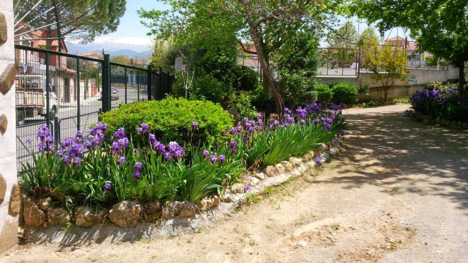 Parques y jardines de ogijares abril 2015 for Jardines de abril