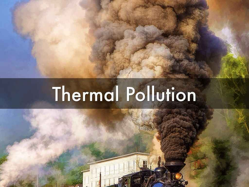 causes effects essay water pollution Solutions essay and effects pollution water causes december 20, 2017 @ 2:49 pm protecting the environment essay 200 words to use instead of said.