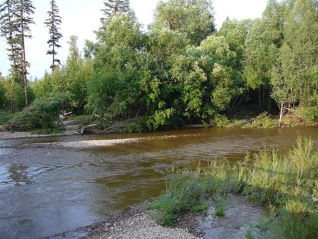 Отправляясь в путешествие на реку Дуки