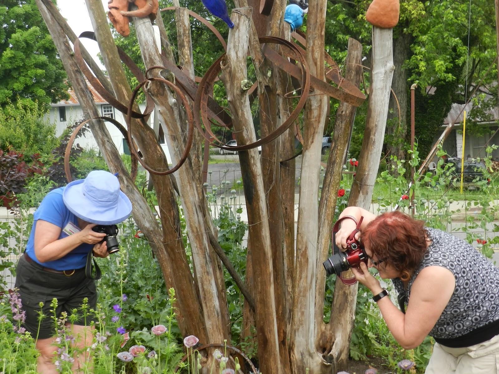 Prairie Rose\'s Garden: June 2012