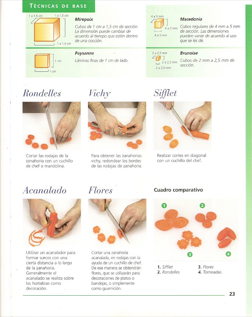 Cortes de verduras y frutas pdf filecloudsblog for Cortes de verduras gastronomia pdf