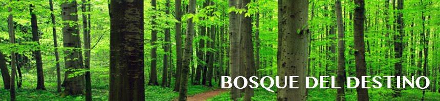 Bosque del Destino - Blog de Juegos