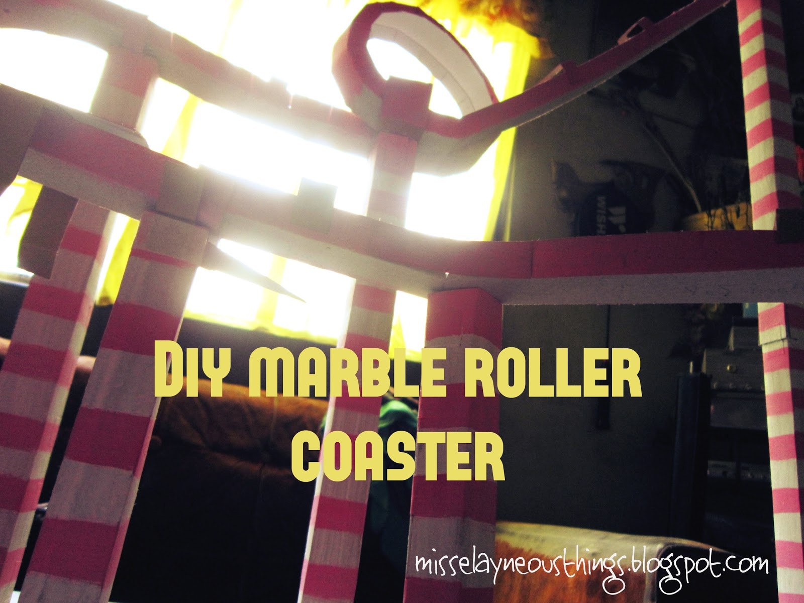 DIY Science Project Marble Roller Coaster