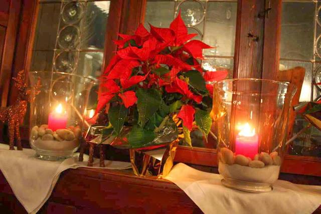 """Weihnachtliche Deko im """"Fidelen Affen"""" in Salzburg © Copyright Monika Fuchs, TravelWorldOnline"""