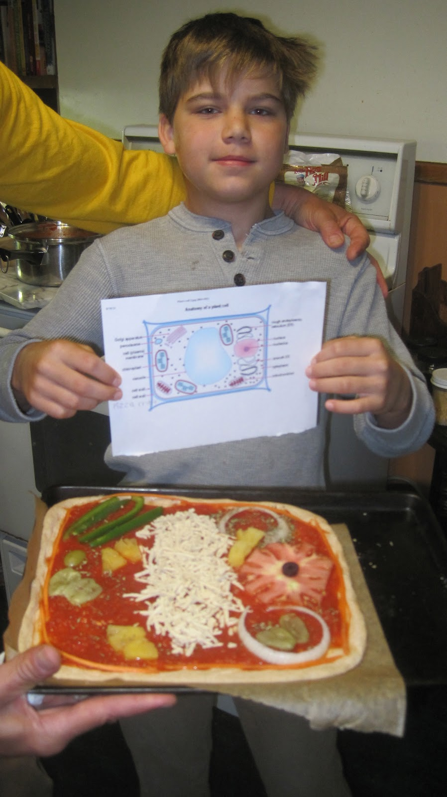 Vegan linda parkers plant cell pizza during the week he decided what his toppings would buy and how to arrange them as he learned the accurate anatomy of a plant cell ccuart Choice Image