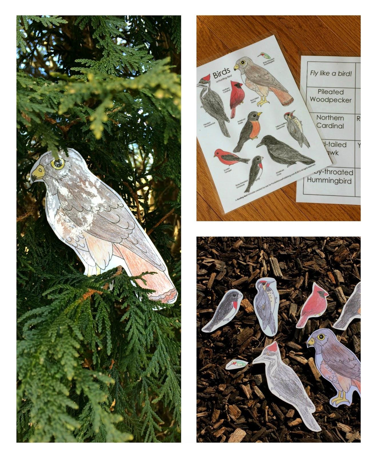 Free Bird Printable Set of Hunting Red from PocketMousePublishing.com