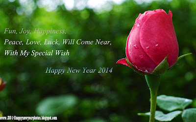 Beautiful Happy New Year Poems 2014