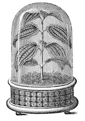 Vintage изображения Cloche завода Black White Garden гравировки