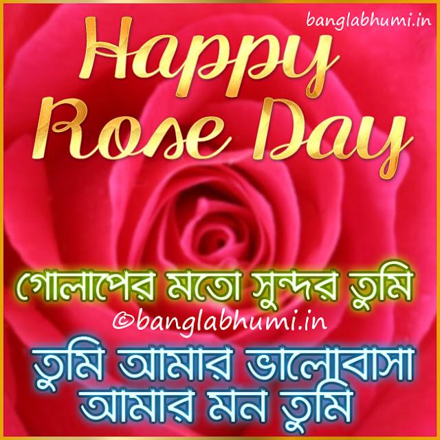 Happy Rose Day Bengali Wishing Wallpaper