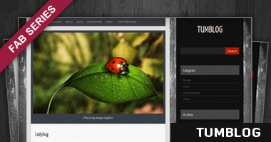 Free Quantez WordPress Theme - Similar to Tumblr Sites