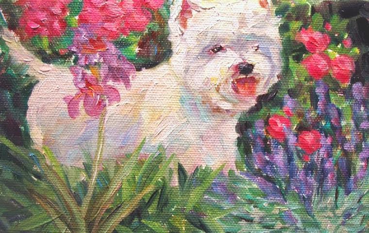Westie, Art & Garden