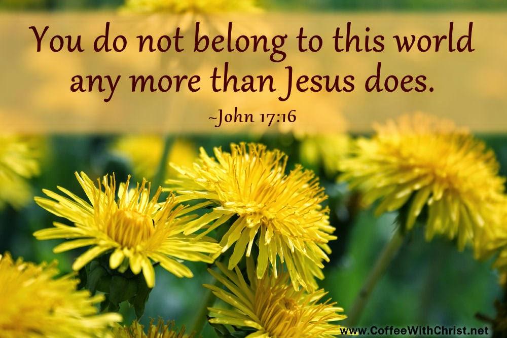 John 17:16