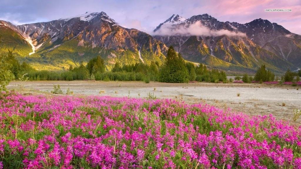tải hình nền thiên nhiên đẹp