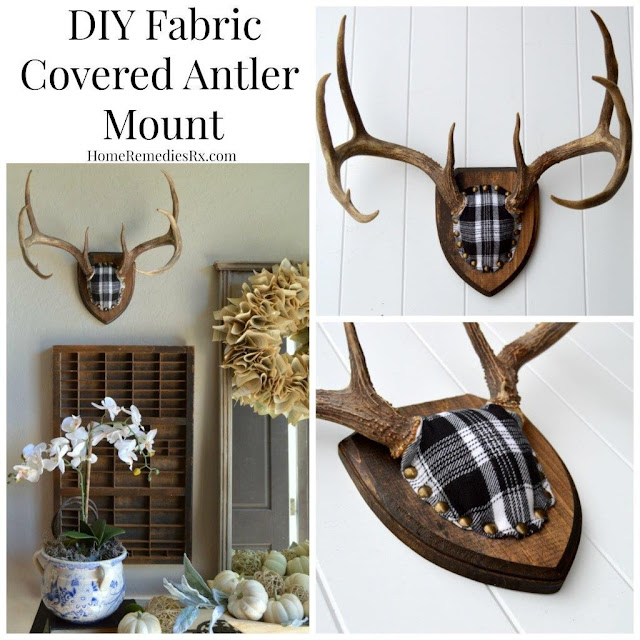 Home Remedies Rx- DIY Antler Mount-Treasure Hunt Thursday- From My Front Porch To Yours