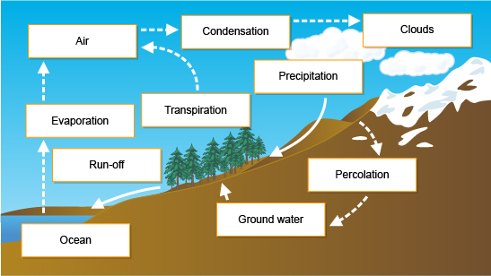water cycle flow diagram my dog ate my homework  river profiles  my dog ate my homework  river profiles