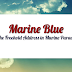 Marine Blue Singapore - Full Resort Style Condominium Facilities For You To Enjoy!