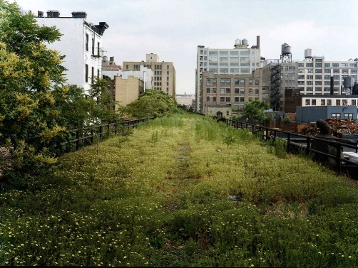 http://www.thehighline.org/galleries/images/high-line-1999-2006