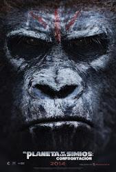 El Planeta de los Simios Confrontación
