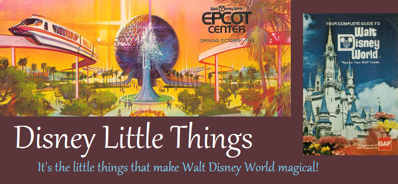 Disney Little Things